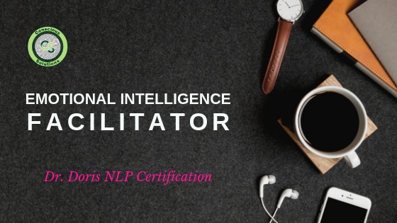 EI Facilitator & NLP Trainer