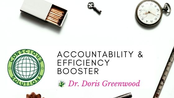 Accountability & Efficiency Booster